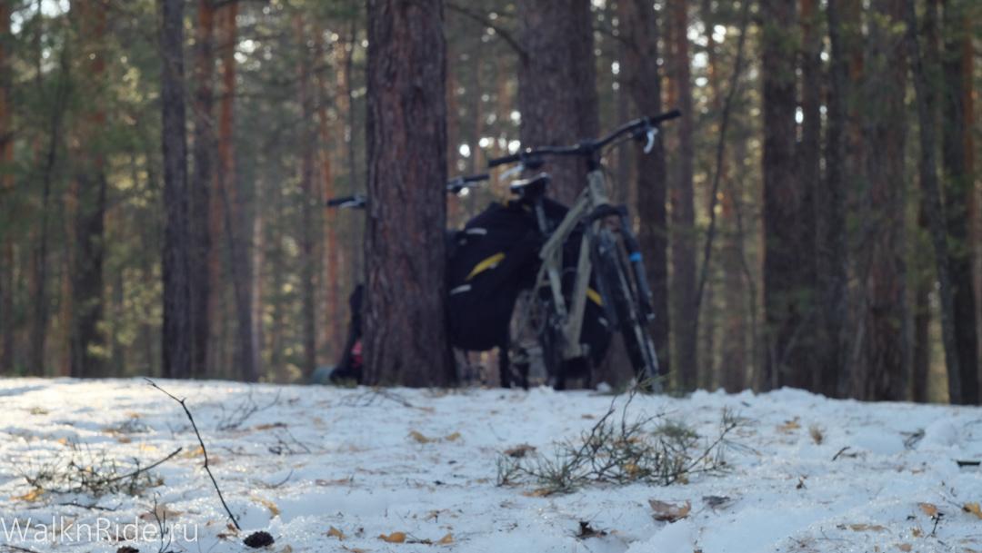 Зимняя ночевка в лесу